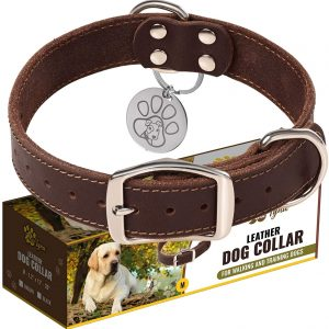 ADITYNA Leather Large Dog Collar