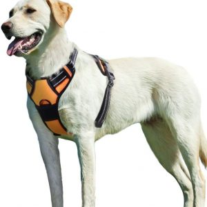 Eagloo Large Dog Harness No Pull, Large
