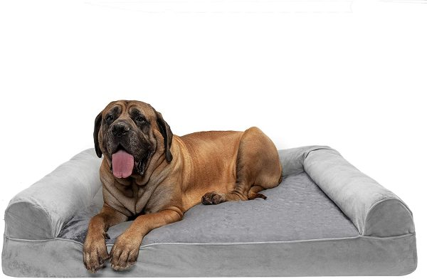 Furhaven Pet - Large Dog Orthopedic Living Room Sofa