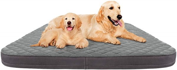 JoicyCo Large Dog Bed