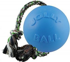 Jolly Pets Romp-n-Roll Rope and Ball Large Dog Toy