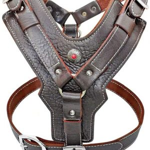 PET ARTIST Leather Large Dog Harness