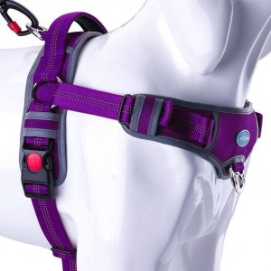 Think Pet No Pull Large Dog Harness