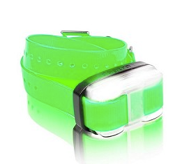 Dogtra EDGE 1 Mile Extra Large Dog Collar - Green