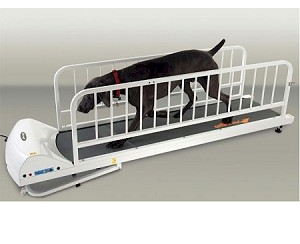 PetRun PR725 Large Dog Treadmill